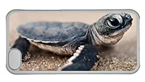 Hipster DIY iPhone 5C covers Baby Turtle PC Transparent for Apple iPhone 5C