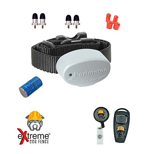 Extreme Dog Fence Perimeter Technologies Invisible Fence R21 Replacement Collar 7K 1 Dog and Free Backup Collar Strap