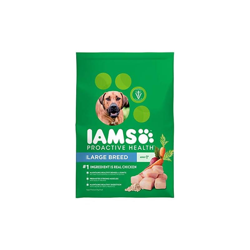 dog supplies online iams proactive health large breed premium adult dry dog food (1) 30 pound bag
