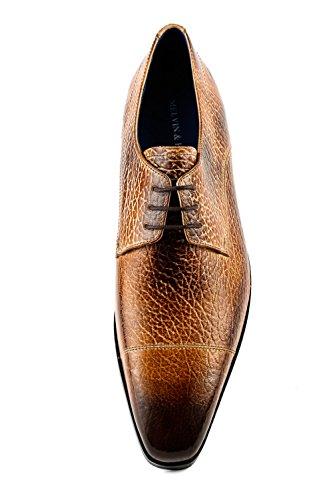 Melvin pour à 780 Lacets Chaussures Hamilton Homme Marron Ville MH15 Marron de amp; BzwrB4