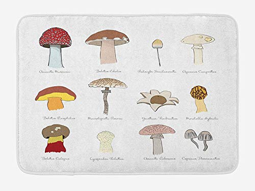 - K0k2t0 Doormats Mushroom Bath Mat, Colorful Fungi Pattern Blusher Boletus Sketch Style Plants Autumn Illustration, Plush Bathroom Decor Mat with Non Slip Backing, 23.6 X 15.7 Inches, Multicolor