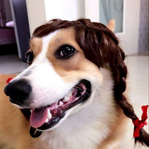 Pet Wig for Dogs Cats Costume Accessories Cosplay
