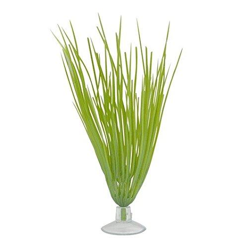 Marina Betta Kit Plastic Plant, Hairgrass