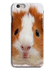 Hamster iPhone 6 Case