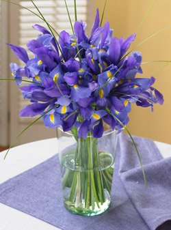 Blue Iris Bouquet by Organic Bouquet