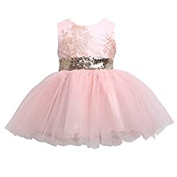 Newborn Toddler Baby Girls Floral Sleeveness Lace Princess Dresses Tutu Sundress (6T, Pink)