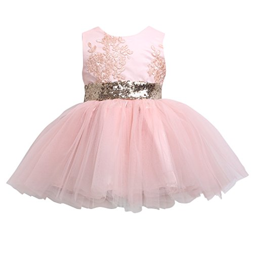 Hotone Newborn Toddler Baby Girls Floral Sleeveness Lace Princess Dresses Tutu Sundress (6-12M, (Pink Tutu Dress)