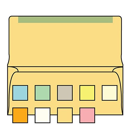 #6-3/4 Collection/Remittance Envelopes, 3-5/8'' x 6-1/2'' 24# Recycled Buff Pastel, Open Side, Flaps Extended (Box of 500) by The Envelope Supplies Shop