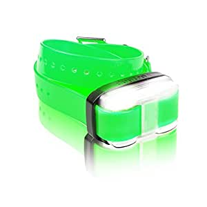 Dogtra Edge Additional Receiver Green Strap