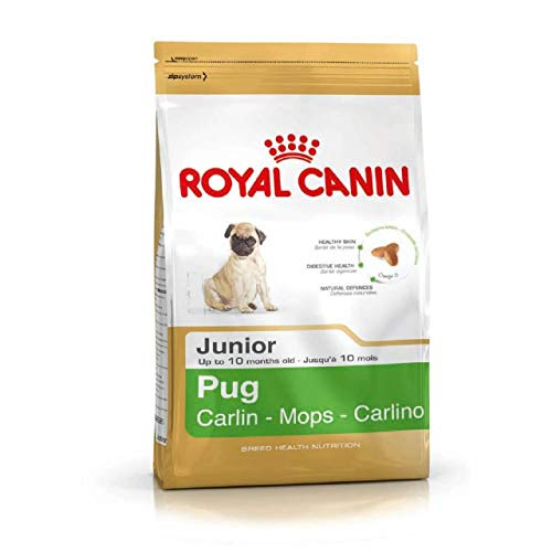 Royal Canin Pug Junior (1.5kg)