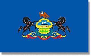 product image for 4x6' Pennsylvania 2ply Polyester State Flag