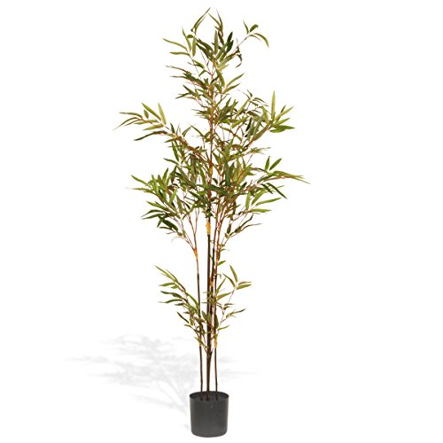 Black Bamboo Tree - National Tree 4 Foot Mini Bamboo Tree in Black Pot (RAS-TH371BP5-1)
