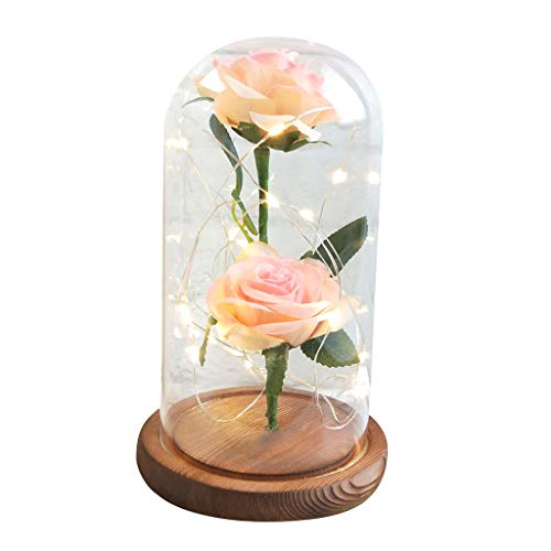 BOOMdan Christmas Decoration Beauty and The Beast Red Rose Fallen Petals in A Glass Dome On A Wooden Base Birthday Valentine
