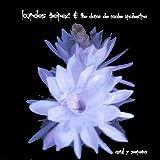 Azul Y Serena by Lourdes Perez & Dama De Noche Orchestra (2004-05-03)