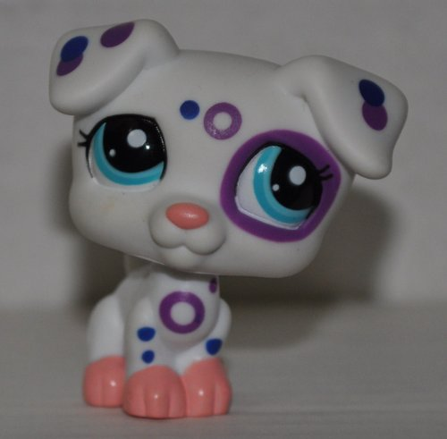 lps jack russell - 6