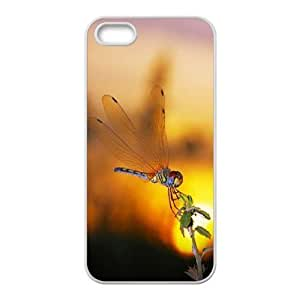 Cool Painting Dragonfly Unique Design Cover Case for Iphone 5,5S,custom case cover case630204