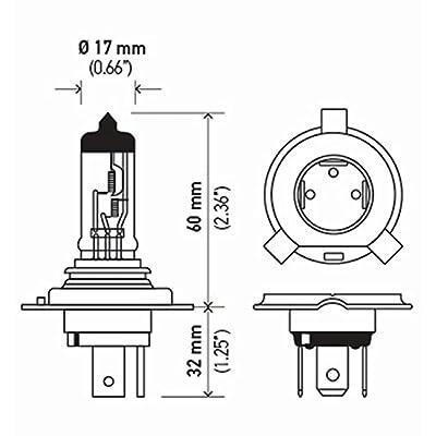 HELLA 9003TB Standard Halogen Bulbs, 12 V, 60/55W: Automotive