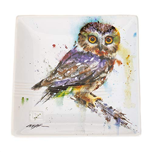Big Sky Carvers Saw Whet Owl Snack Plate, Multicolor (Plate Owl Small)