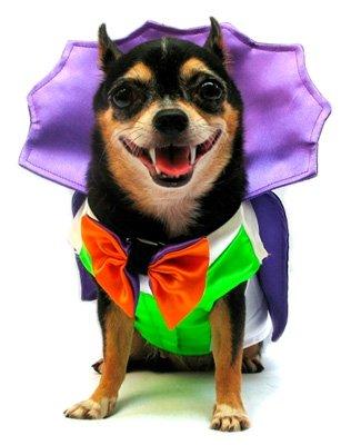 4 PAMPET Dogula Costume (4)
