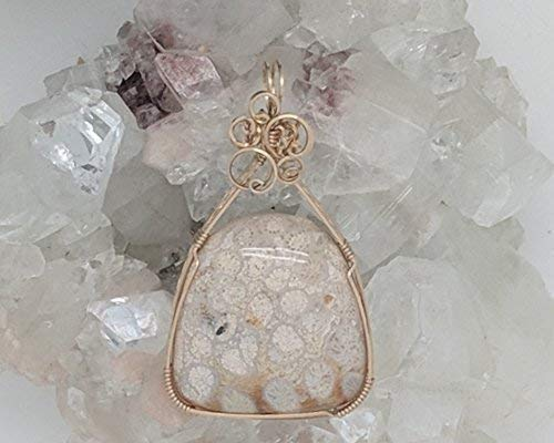 Fossilized Coral Pendant (2-3/8 x 1-1/4 Inches) Wrapped With 14 Karat Gold Filled Wire (Natural Stone Pendant) (Brown) (Wire Wrap)