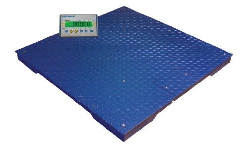 Adam-Equipment-Floor-Scale-and-Weight-Indicator
