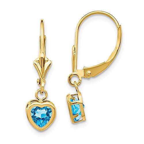 14k Yellow Gold 5mm Heart Blue Topaz Leverback Earrings Lever Back Love Drop Dangle Gemstone Bezel Fine Jewelry Gifts For Women For Her