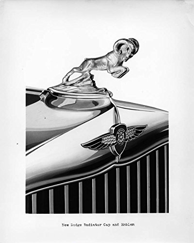 Review 1932 Dodge Radiator Cap