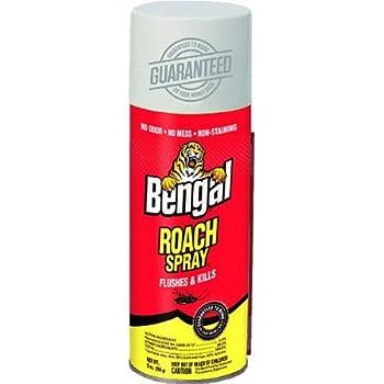 Amazon.com : Roach Spray : Garden & Outdoor