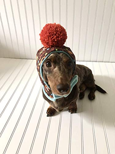 Dog Hat Miniature Dachshunds Small Dog Hat Pet Clothing Pet Accessories Pet Hat Dachshund Clothes Dachshund Small Dog Hoodie