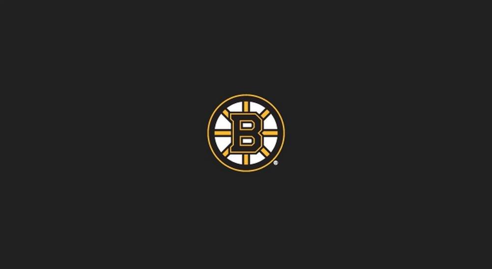 Imperial公式ライセンスNHL 8-footビリヤード/プールテーブルクロス B00JFC0MWA Pittsburgh Penguins