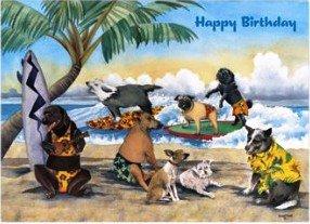 Hawaiian birthday card party animals amazon electronics hawaiian birthday card party animals m4hsunfo