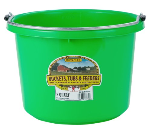Miller Manufacturing P8LIMEGREEN Plastic Round Back Bucket for Horses, 8-Quart, Lime Green