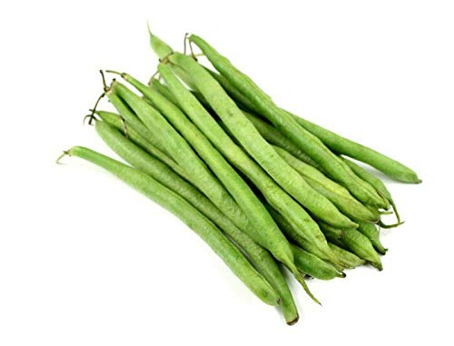 (50 Burpee STRINGLESS Green POD Bean French Phaseolus Vulgaris Vegetable Seeds)