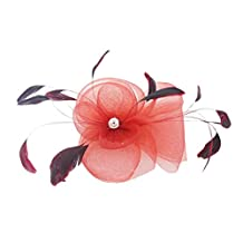 Feather Wedding Bridal Ladies Fancy Race Fascinator on Clip Hair Accessories 6 Colors - Red