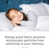 AllerEase Waterproof Allergy Protection Zippered