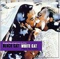 黒猫、白猫