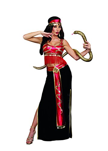 Dreamgirl Women's The Snake Charmer Belly Dancer Costume, Multi, Large