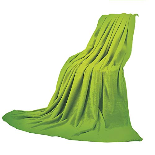 - Super-Thick Flannel Warm Sofa or Bed Blanket,Green,Abstract Soft Color Shades Summer Eco Nature Theme Faded Tones Display Decorative,Apple Green Fern Green,39.37