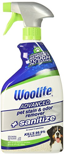 Woolite Advanced Pet Stain & Odor Remover + Sanitize, 11521 (22fl oz) (Best Carpet Stain And Odor Remover)