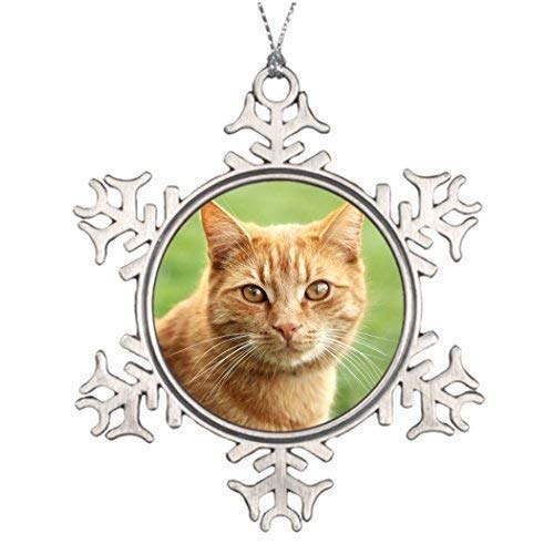 (EvelynDavid Snowflake Ornament Personalised Christmas Tree Decoration Cute Orange cat Portrait Snowman Christmas Snowflake)