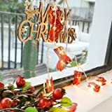 2M Battery Operated Warm White Christmas Sock LED String for Wedding Party