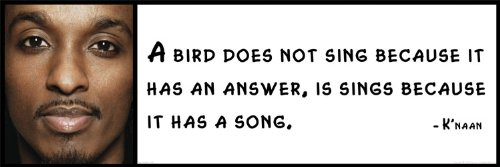 Vinylz Art Wall Quote - K'naan - A Bird Does not Sing Because it has an Answer, is Sings Because it has a Song.