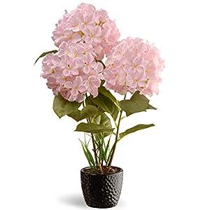 "CC Christmas Decor 20"" Potted Artificial Pink Hydrangea Flower Arrangement in Black Pot 80"