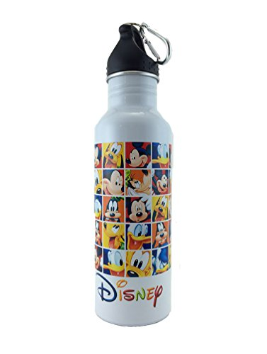 Disney Mickey and the Gang Water Bottle - Wide Mouth