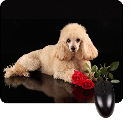 Cute Poodle with Red Roses- Square Mousepad - Stylish, durable office accessory and gift (Red Poodle)