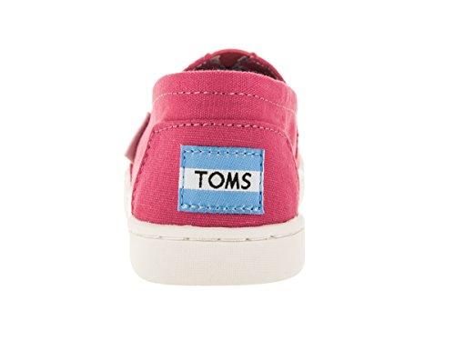TOMS Womens Classics Barberry Pink Q7DvOSM