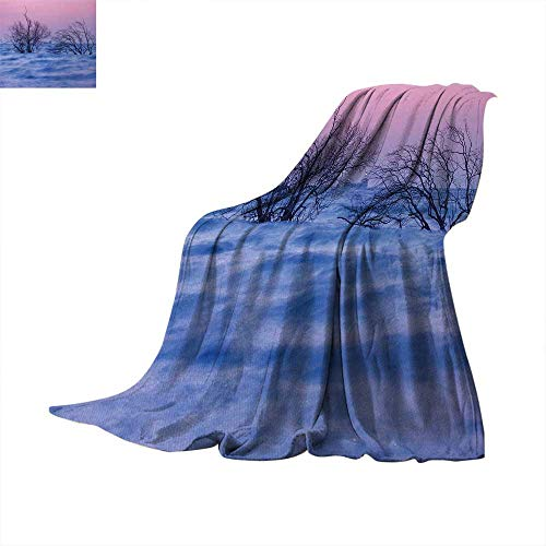 Driftwood Super Soft Lightweight Blanket Nature Theme Dead Trees in The Wavy Sea During Twilight Time Digital Image Summer Quilt Comforter 90