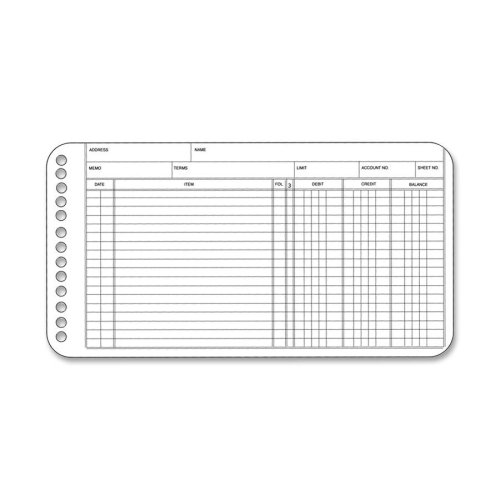 Extra Sheets for Six-Ring Ledger Binder, 100/Pack, Sold as 1 Package