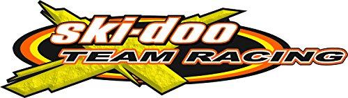 SKI-DOO Team Racing / SINGLE / Vinyl Snowmobile Winter Graphics Vehicle Decal Sticker