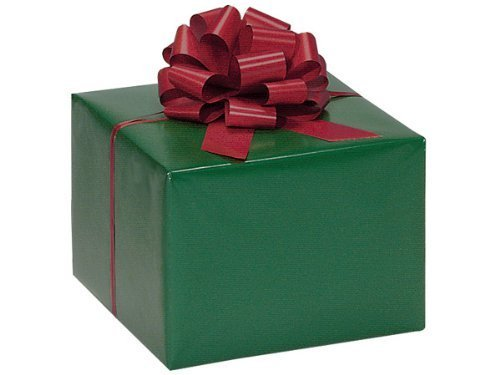 HUNTER GREEN Gift Wrap Wrapping Paper 16 Foot ()